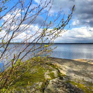 Sø i Sverige