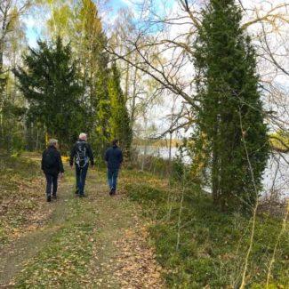 Vandretur i Sverige